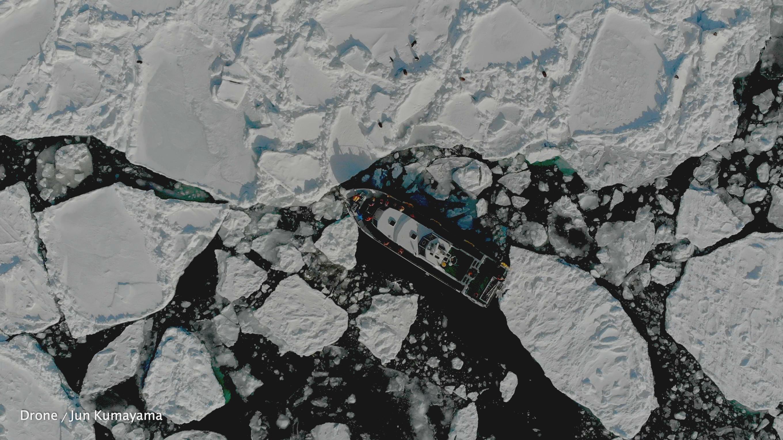 ホエールウォッチング&流氷バードウォッチング | 観光船アルラン三世